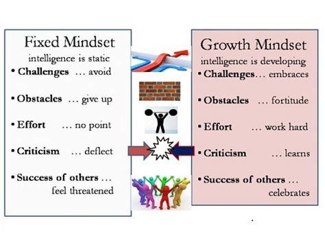 summary mindset the psychology of success mindset the psychology of success paperback summary hardcover audiobook book 1 books educational thinkers of fame carol dweck and