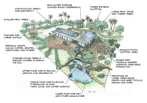 homestead layout plans on 1 acre or less the self sufficient 1 acre homestead usa vs costa rica rcs