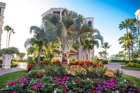 Landscape Design Fort Myers About Parsons Landscaping