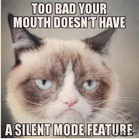 Too Funny Meme - 252 best images about miss grumpy cat on pinterest