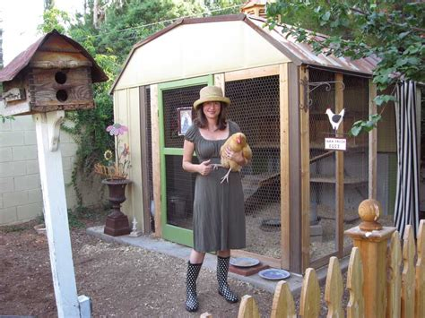 backyard chicken blogs clever shed to coop conversion modern homesteading