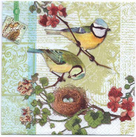 decoupage napkins bird family with birdnest bird napkins