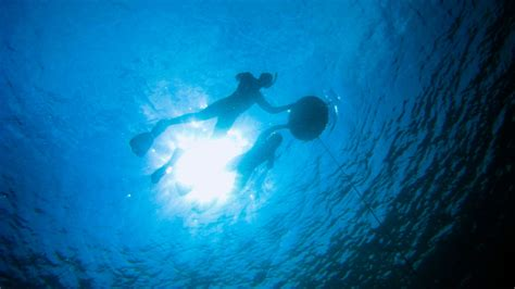 Freediving Open Water Course aida2 open water freediver course freedive flow indonesia gili air