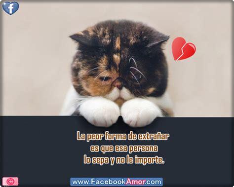 imagenes de tristeza en facebook imagenes tristes de desamor para facebook miexsistir