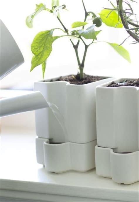 self watering plant pots s 246 tcitron the plant happy and plants