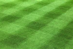 Grass L by Free Logo Thread 7 All Entrepreneurs Go To Heaven