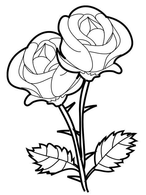 fotos de dibujos para dibujar fotos presupuesto e imagenes rosas para dibujar rosas para dibujar