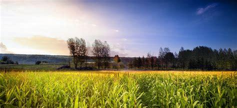 Calendrier Agriculteur Calendrier Des R 233 Coltes Ferme Arthur Cauchon Agriculteur
