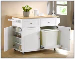 Small kitchen pantry storage home design ideas