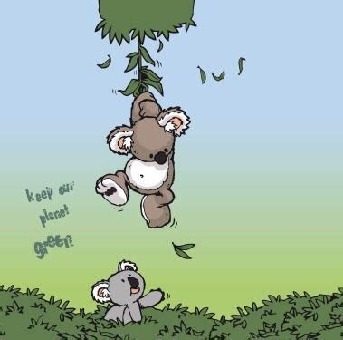 glitter wallpaper gumtree 710 best images about i love koalas on pinterest its the