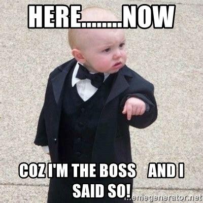 Mafia Kid Meme - here now coz i m the boss and i said so mafia