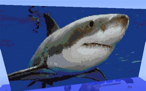 shark creation