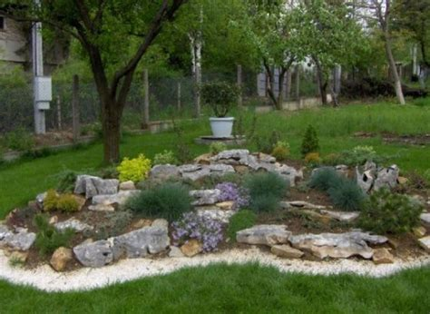 miniature rock garden alpine rock gardens create a miniature world of plants