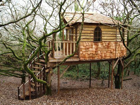 Sun T Tree House