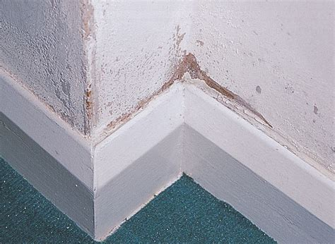 Stone Baths by How To Identify Repair Amp Protect Against Damp At Home