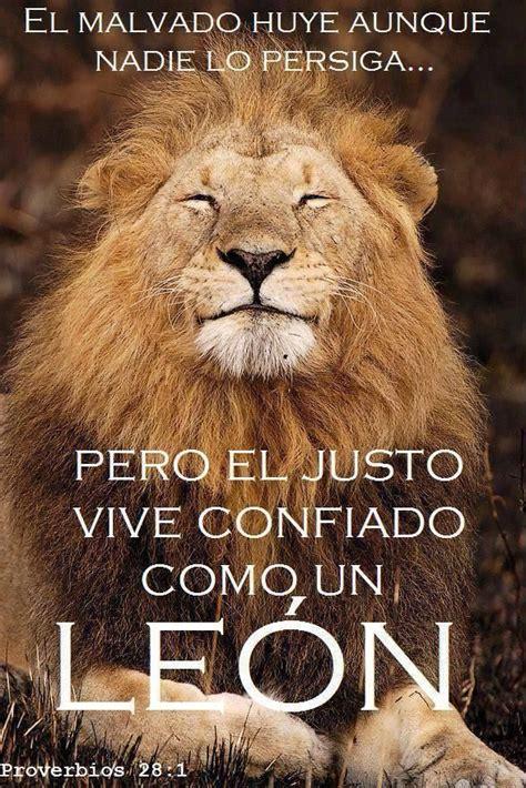 imagenes con leones cristianas proverbios 28 1 jes 250 s el le 243 n de la tribu de juda