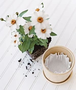 Lf Lq Sabrina Flower line flowerpots and planters with coffee filters to stop soil from falling through the drainage