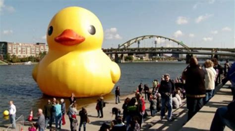 Rubber Duck Pittsburgh Location by Yellow Rubber Duck Returning To Pennsylvania 171 Cbs