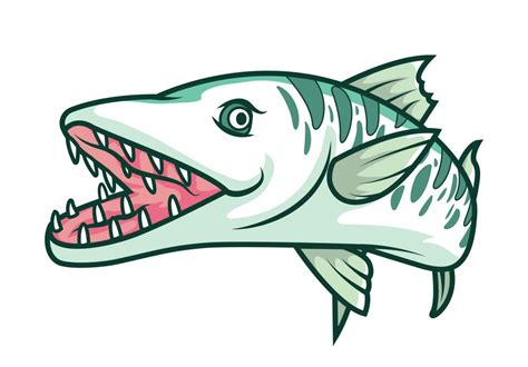 barracuda clipart great barracuda drawing www pixshark images
