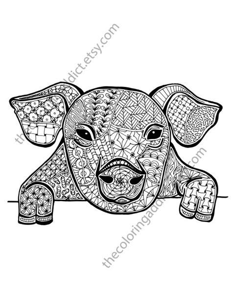 pig coloring sheet, animal coloring pdf, zentangle