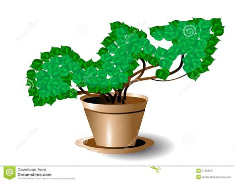 symbol of growth symbol of growth royalty free stock photography image
