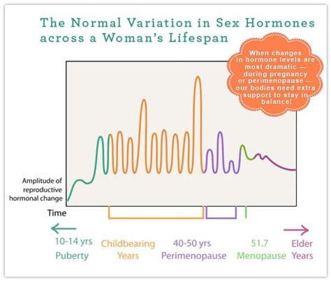 images perimenopause estrogen are you what is perimenopause women s health network