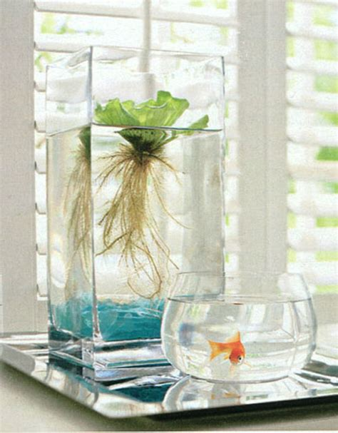Window Garden Ideas Happy Mundane Jonathan Lo 187 Window Garden Ideas