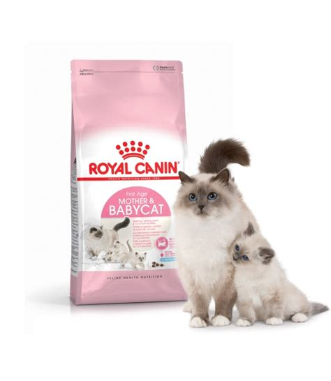 Royal Canin N Baby Cat Freshpack 4kg baby cat royal canin achat vente alimentation pour chaton sur jaiplusdecroquettes