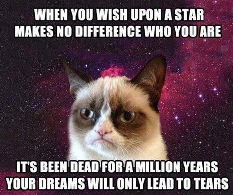Jiminy Cricket Meme - wish upon a star the cat pinterest