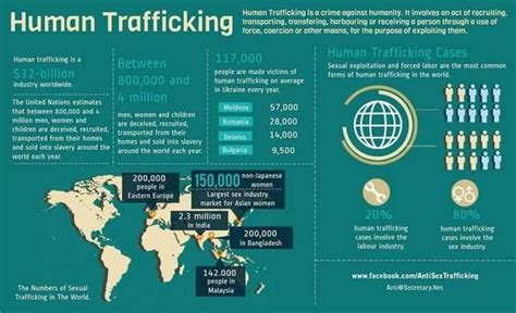 libro human trafficking a global 1000 images about trafficking infographics on domestic violence typography poster