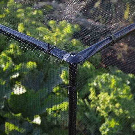 Nets Frames For Bird Pest And Ball Control By Knowle Nets Vegetable Garden Netting Frame