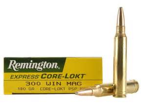 Remington express ammo 300 winchester mag 180 grain core lokt pointed