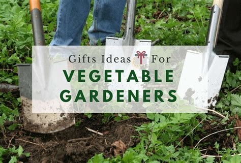 Vegetable Garden Gifts Vegetable Garden Gift Ideas Garden Gift Ideas