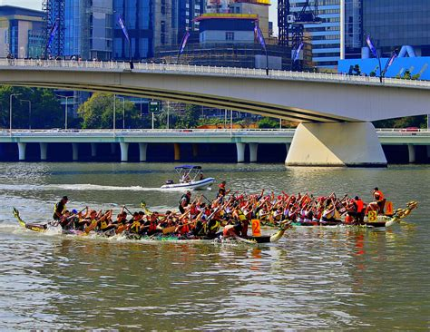 dragon boat qut qut dragon boat regatta south bank brisbane family