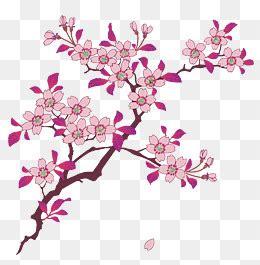pattern bunga sakura sakura png vectors psd and icons for free download