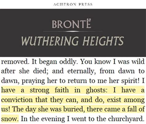 common themes in wuthering heights and pride and prejudice an unexpected reaction to emily bront 235 s wuthering heights