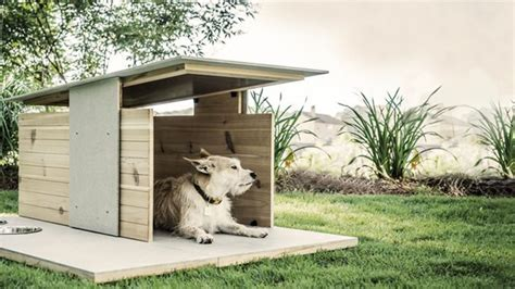 most amazing dog houses 7 totally amazing dog houses cuteness
