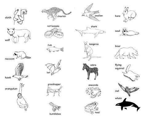 printable animal charades cards ways animals move charades with pictures arts