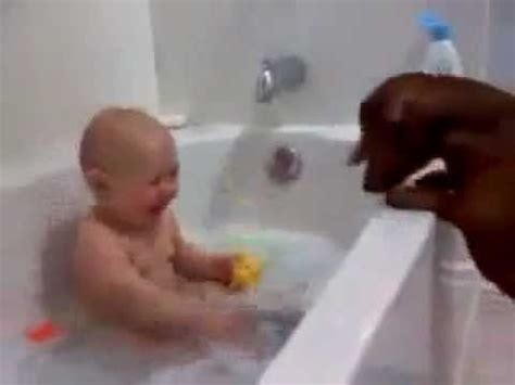 baby in bathtub laughing at dog 25 best ideas about laughing baby on pinterest cute