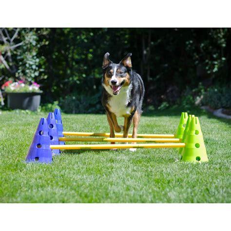 agility zuhause caninegym 174 agility kit cavaletti set