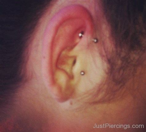 tragus piercing pictures and images page 5 tragus piercings page 5