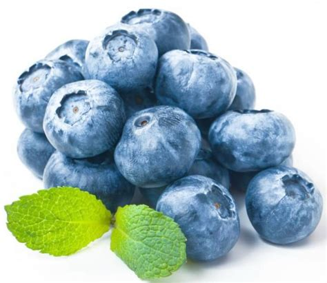Can Blueberries Cause Black Stool diarrhea wonderful can blueberries make your stool