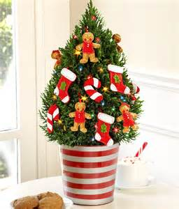 Decorated Miniature Christmas Trees - decorate with mini christmas trees learn how from the pros