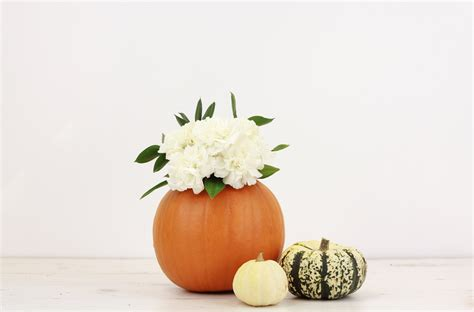 how to diy pumpkin flower vase bloom