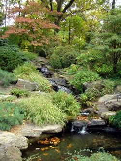 water rock garden rock garden ideas for creating a rock garden
