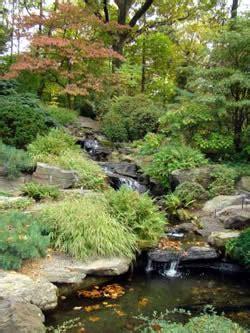 rock garden ideas  creating  rock garden