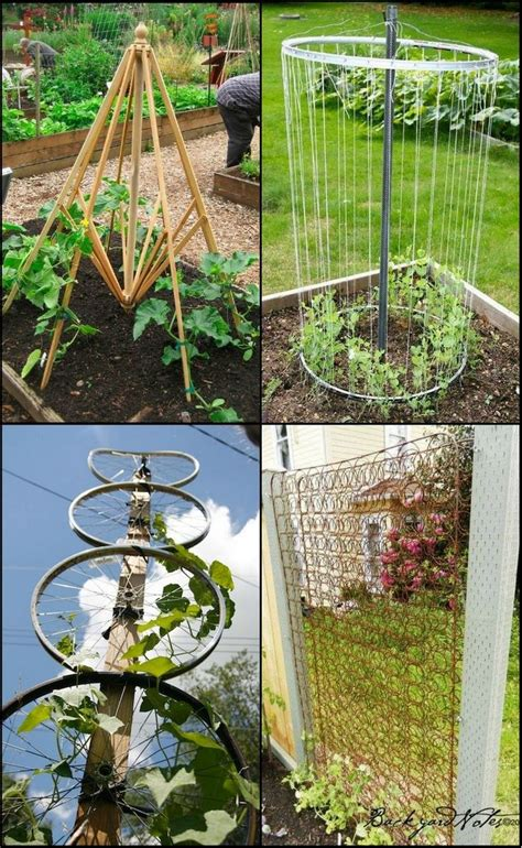 Cheap Garden Trellis Ideas Best 25 Cheap Trellis Ideas On Pinterest Cheap Landscaping Ideas For Front Yard Cheap
