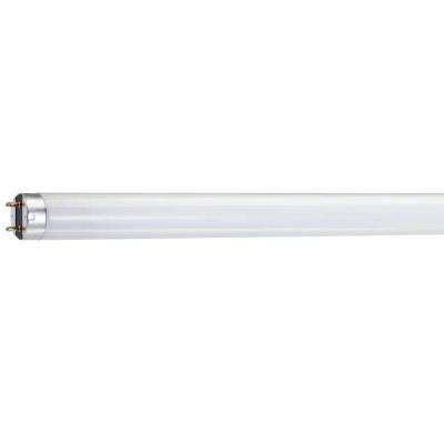 Led Grow Lights Home Depot by Grow Light Bulbs Specialty Light Bulbs The Home Depot