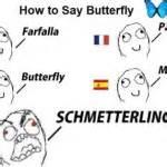 German Butterfly Meme - k 246 lner dom meganotravels
