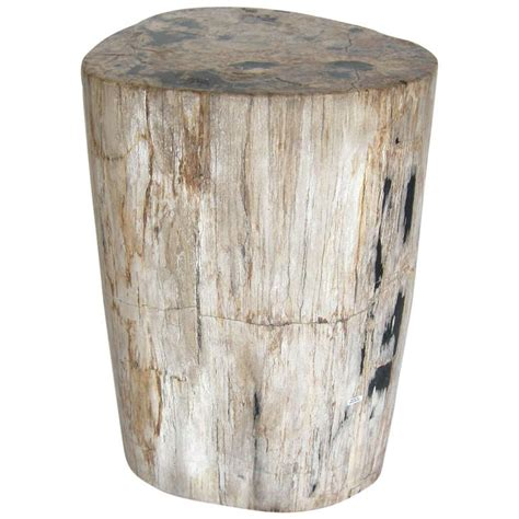Petrified Wood End Table by Petrified Wood Side Table At 1stdibs